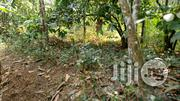 Virgin Farm Land at Abeokuta for Sale | Land & Plots For Sale for sale in Ogun State, Odeda