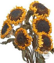 Dried Sunflower Organic Herbs | Meals & Drinks for sale in Plateau State, Jos