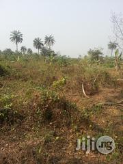 Arable Virgin Farm Land for Sale at Isiun Ogun State | Land & Plots For Sale for sale in Ogun State, Obafemi-Owode