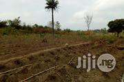 100 Acres Of Farm Land At Olomi Village Off Iseyin Ibadan Express Way | Land & Plots For Sale for sale in Oyo State