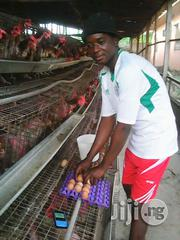 Mr Lawal Adebayo | Farming & Veterinary CVs for sale in Lagos State