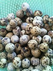 Quail Eggs For Sale | Meals & Drinks for sale in Plateau State, Jos