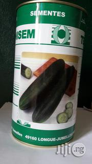 Cucumber Marketer 500g   Feeds, Supplements & Seeds for sale in Delta State, Oshimili North