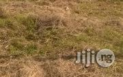 3000sqm Land For Lease At Lekki Epe Express Rd, Ikate | Land & Plots for Rent for sale in Lagos State, Lekki Phase 1