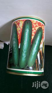 Cucumber Poinsett 100g   Feeds, Supplements & Seeds for sale in Delta State, Oshimili North