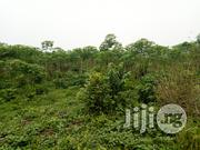8 Acres Farmland at Iyana Offa | Land & Plots For Sale for sale in Oyo State, Lagelu