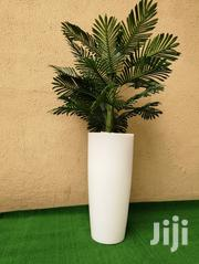 Affordable Artificial Tree Plant At Wholesale Price | Garden for sale in Delta State, Ndokwa East
