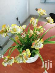 Garden Cup Flowers For Decoration At Sales | Garden for sale in Plateau State, Bassa-Plateau