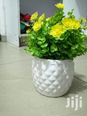 Cute Mini Pot Flowers For Beautification Of Homes And Offices | Garden for sale in Adamawa State, Hong