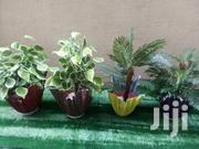 Order For Your Vase Planter In Nigeria | Home Accessories for sale in Adamawa State, Yola North