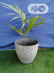 Affordable And Decorative Flower Pots For Sale | Garden for sale in Ebonyi State, Ivo