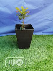 Flower Pots And Planter For Compound Decorations   Garden for sale in Plateau State, Kanke