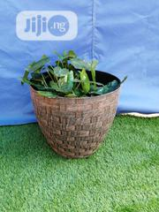 Adorable Plant Pot For Sale | Manufacturing Services for sale in Delta State, Bomadi