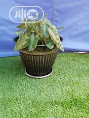 Quality Affordable Flower Pot For Sale | Garden for sale in Plateau State, Pankshin