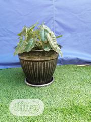Fabulous Flower Pot For Sale | Garden for sale in Bauchi State, Jama'are