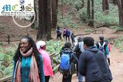 Take A Walk And Step Of Faith By Applying To Study Overseas | Travel Agents & Tours for sale in Lagos State, Lagos Island