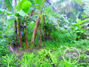 Beautiful Land By Enen Nsit | Land & Plots For Sale for sale in Akwa Ibom State, Nsit Ibom