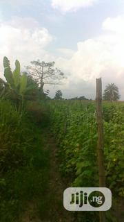 Plot of Farmland At Epe By Augustine University For Sale. | Land & Plots For Sale for sale in Lagos State, Epe