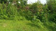 30 Plots Of Land | Land & Plots For Sale for sale in Anambra State, Oyi