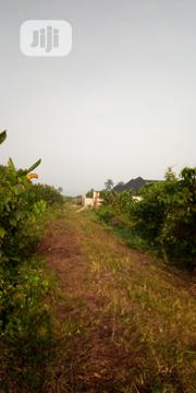 1 Plot of Land Available for Sale at Eneka   Land & Plots For Sale for sale in Rivers State, Port-Harcourt