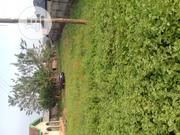 A Plot of Land for Sale at Ijoka, Close to Kajola Oda Road | Land & Plots For Sale for sale in Ondo State, Akure