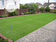 Lawn For Scaping   Garden for sale in Edo State, Benin City