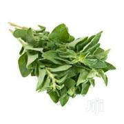 Fresh Oregano Leaf   Feeds, Supplements & Seeds for sale in Lagos State, Victoria Island