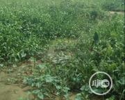 2000 Square Meters Land For Lease | Land & Plots for Rent for sale in Lagos State, Amuwo-Odofin