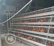 China Factory Imported Hot Dipped Galvanized Battery Cage Best Quality | Farm Machinery & Equipment for sale in Lagos State, Ikorodu