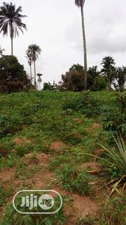 Farmland For Sale | Land & Plots For Sale for sale in Ogun State, Odeda