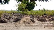 50*50 Land For Sell In Minna | Land & Plots For Sale for sale in Niger State, Chanchaga