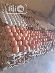 Fresh Affordable Eggs | Meals & Drinks for sale in Plateau State, Jos
