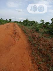 50 Plots of Land for Sale Melekh Olam Consultium | Land & Plots For Sale for sale in Anambra State, Awka