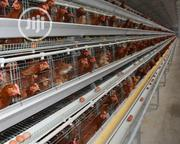 Poultry Cages | Farm Machinery & Equipment for sale in Lagos State, Lekki Phase 1