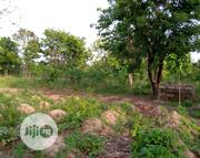 40 Plots Measuring 100 By 100ft For Sell Per 100 Ft | Land & Plots For Sale for sale in Benue State, Oju