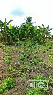A Plot of Land 4sale at Epe Just by the Expressway. | Land & Plots For Sale for sale in Lagos State, Epe