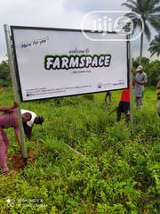 2 Acres Of Farmland For Sale | Land & Plots For Sale for sale in Ogun State, Ilaro