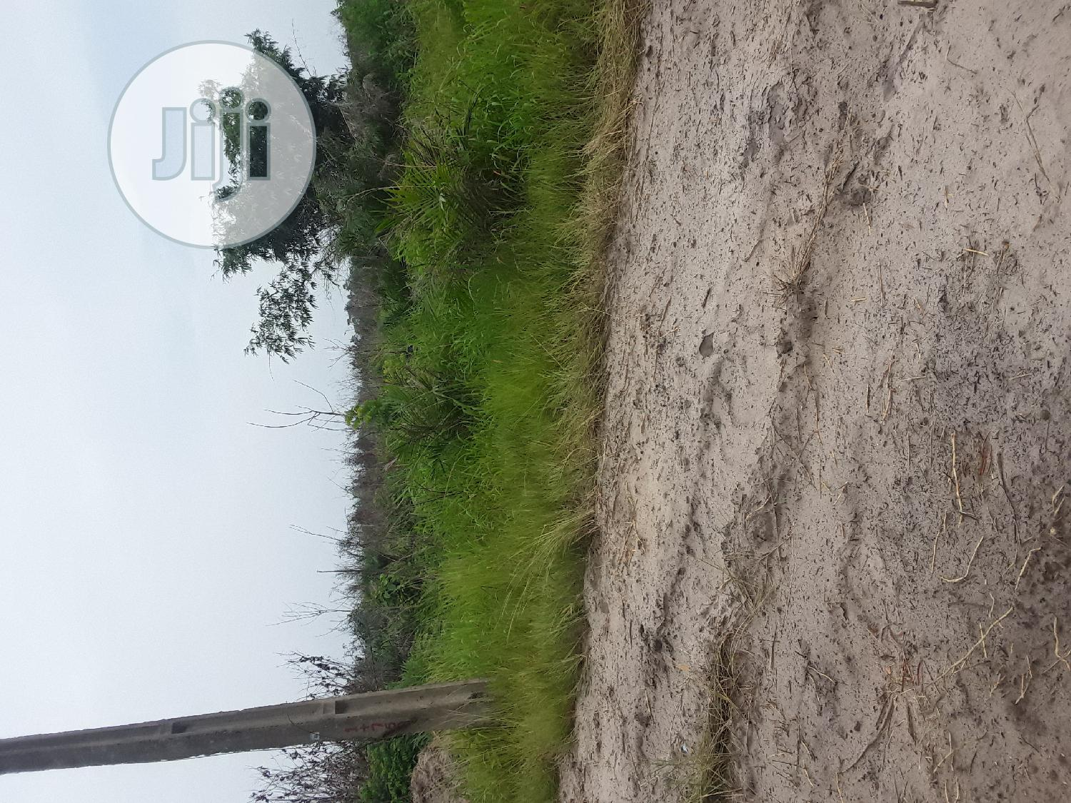 Deed of Assignment, Register Survey and Court Judgement | Land & Plots For Sale for sale in Ibeju, Lagos State, Nigeria