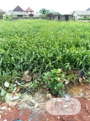 Land for Sale at Harmon Estate | Land & Plots For Sale for sale in Lagos State, Isolo