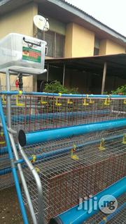 Super Quality Battery Cage | Farm Machinery & Equipment for sale in Adamawa State, Yola North