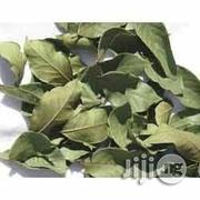 Mint Leaves Dried Mint Leaves Herbs And Spices | Meals & Drinks for sale in Plateau State, Jos