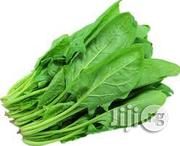 Spinach Vegetable | Meals & Drinks for sale in Plateau State, Jos